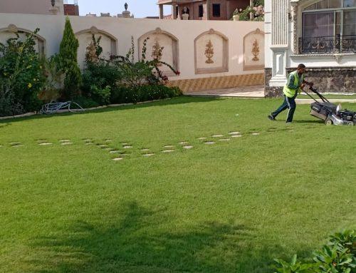 تركيب عشب صناعي ابوظبي |0529195431|شركة الجودي