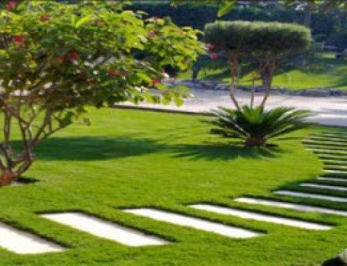تركيب عشب صناعي عجمان  0529195431 شركة الجودي